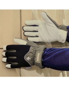 Freezer Glove - Freezemaster 11 Insulated Glove By Polyco