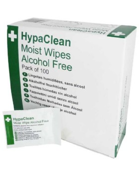 Anti-Septic Wipes