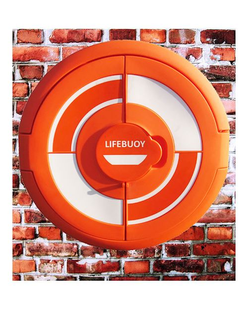 Lifebuoy Cabinet For 30 Inch Lifebuoys - Wall Mounted
