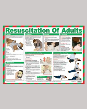 Resuscitation Of Adults Wall Chart