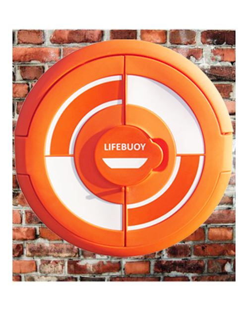 Lifebuoy Cabinet For 24 Inch Lifebuoys - Wall Mounted