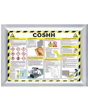 Coshh Wall Chart